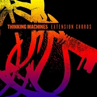 Thinking Machines - Extension Chords (2012)