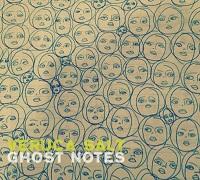 Veruca Salt - Ghost Notes (2015)
